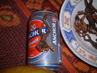 20060531カエルの素揚げ.JPG
