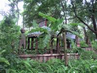 タンプーン族の墓