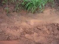 ラタナキリの赤土の道